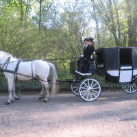 Exclusive horse carriage cab Warsaw
